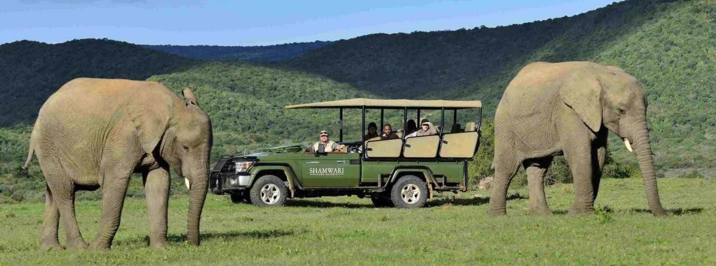 Shamwari-Game-Reserve