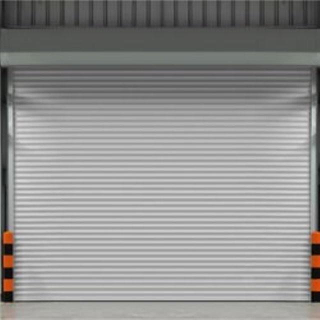 garage door screen lexington ky