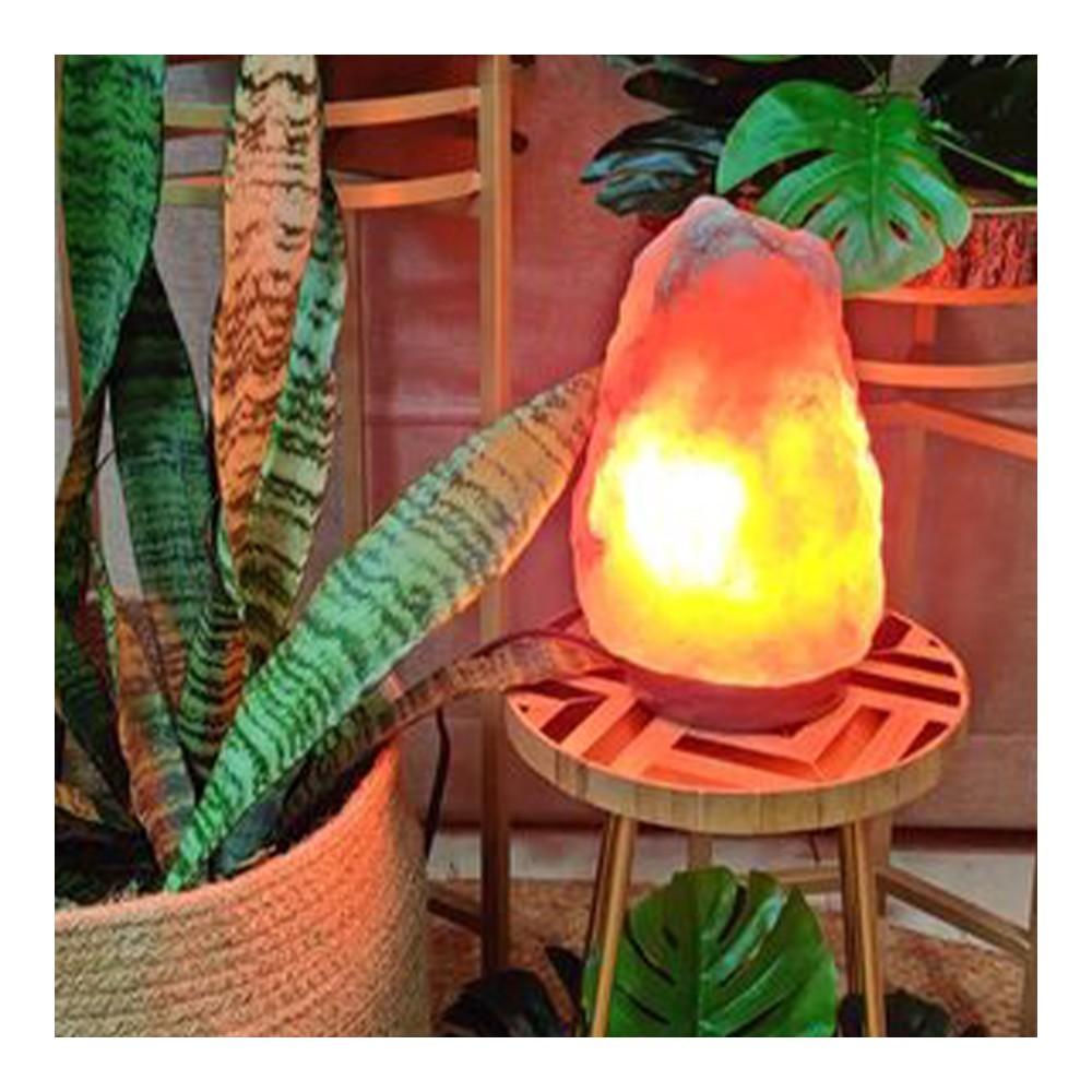 Pink Salt Lamp
