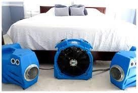 Bed Bug Heat Treatment in Shelbyville