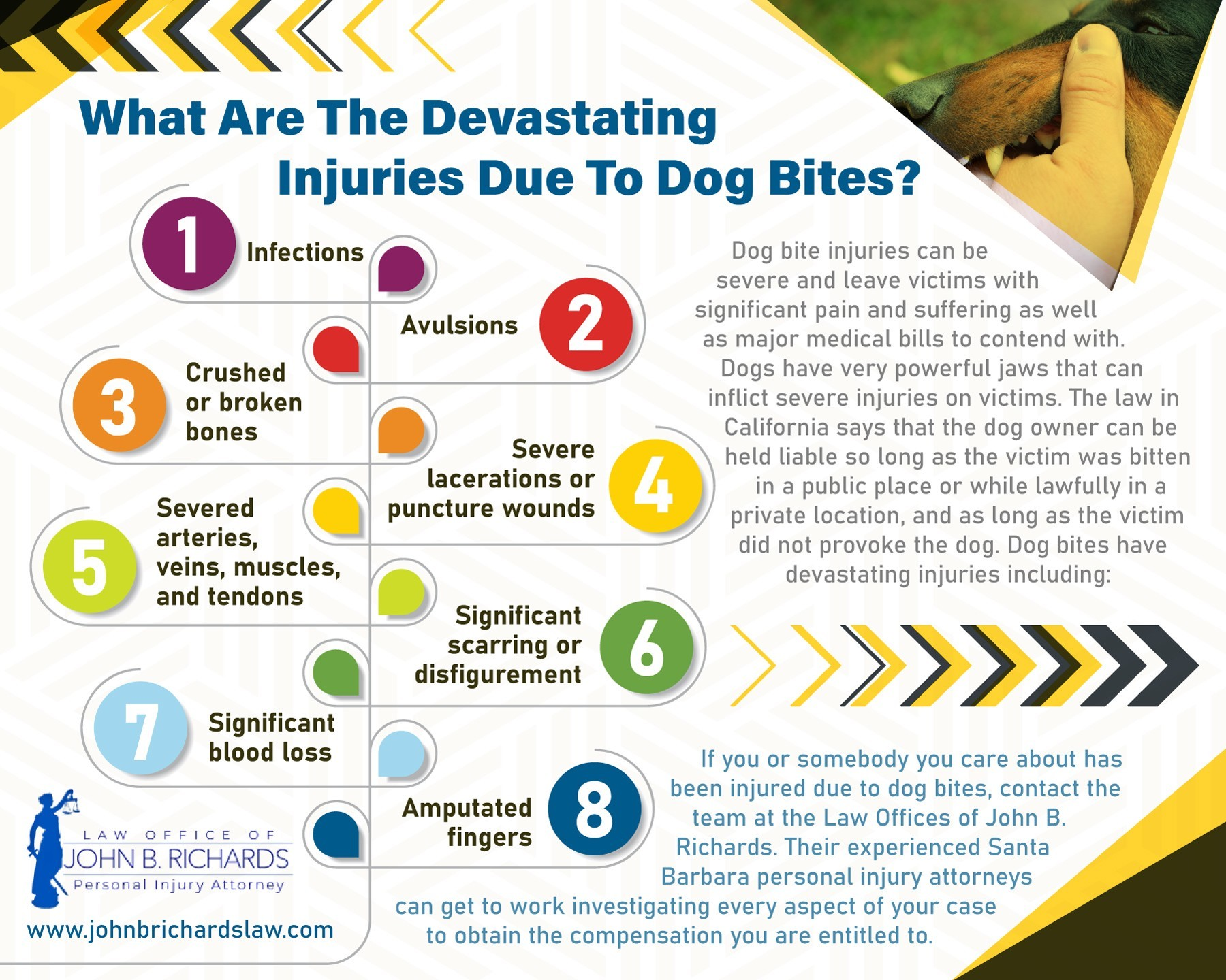 What Are The Devastating Injuries Due To Dog Bites?