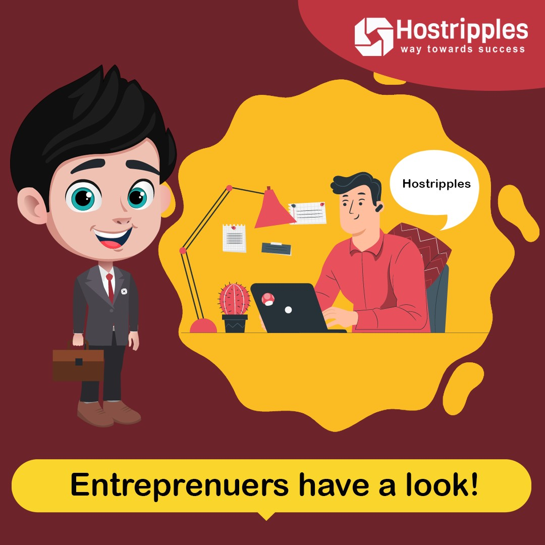 hostripples provides you with domain hosting services
