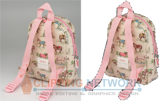Clipping Path With White Background