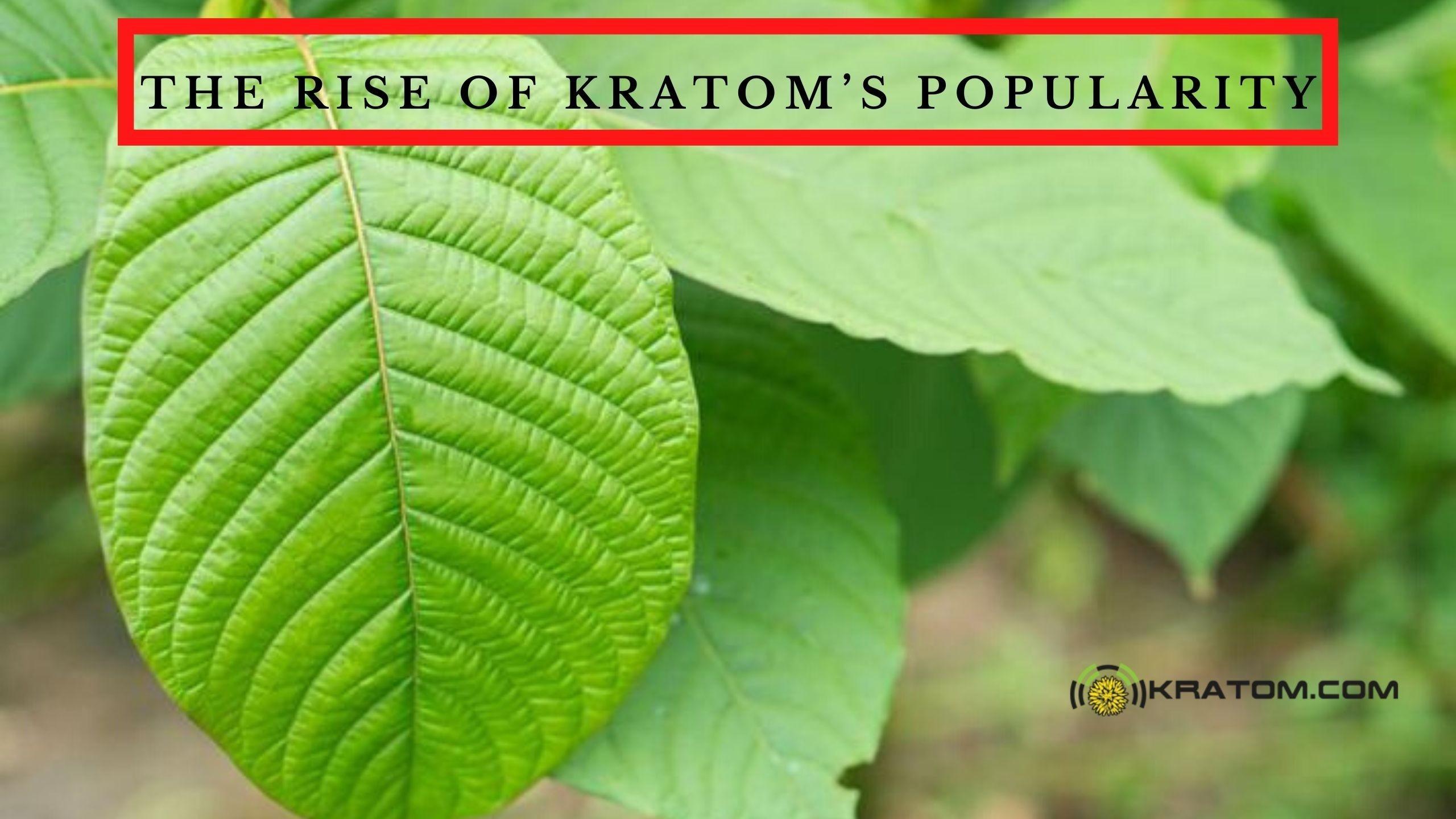 https://kratom.com/en/trending/the-rise-of-kratoms-popularity/21-07-2020