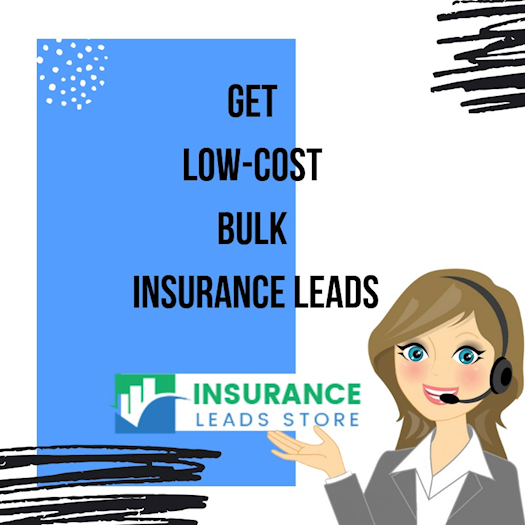 Low Cost Insurance Leads