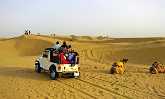 Indian Wildlife Tour Packages | Wildlife Tour Packages | Wildlife Holidays in India | Best Wildlife