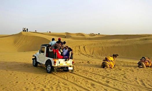 Indian Wildlife Tour Packages | Wildlife Tour Packages | Wildlife Holidays in India | Best Wildlife