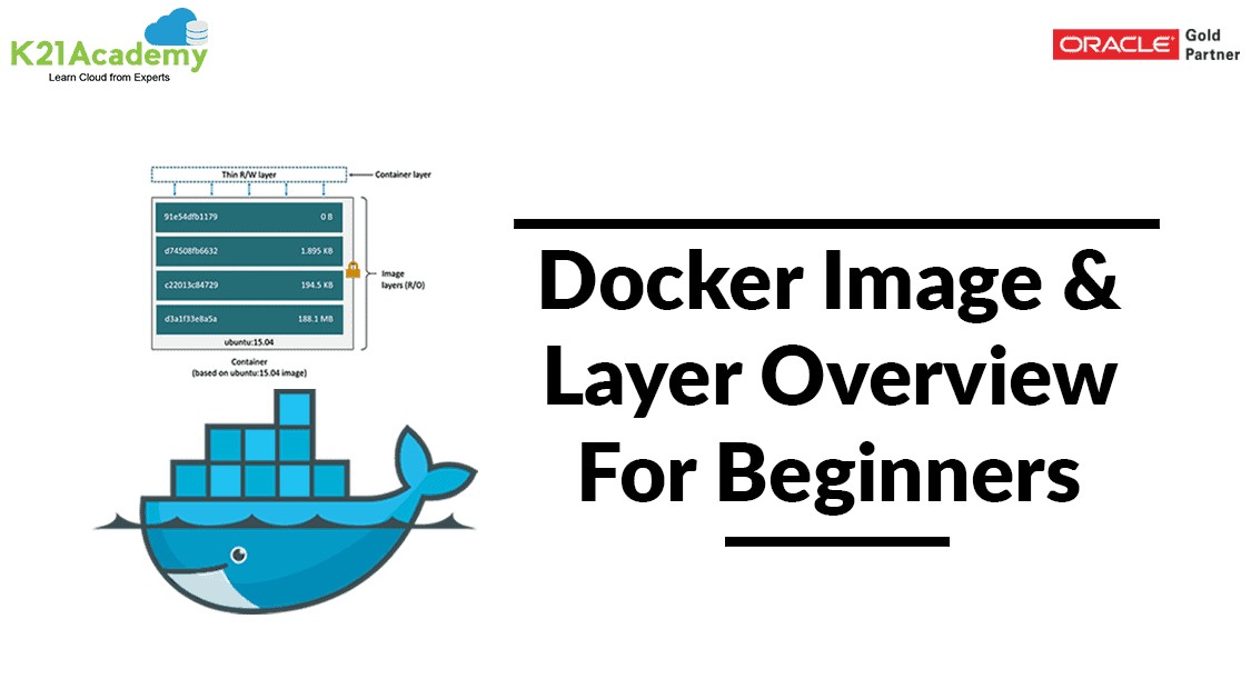 docker image vs container
