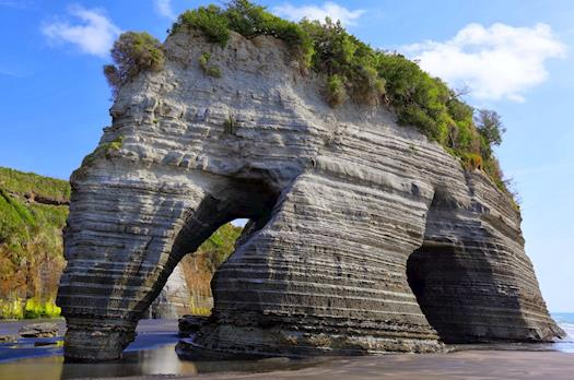 Elephant Rock New Zealand