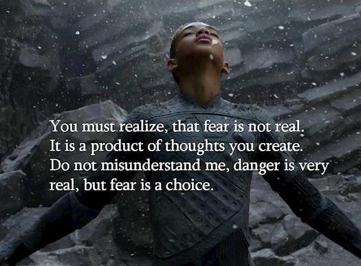 Fear versus Danger