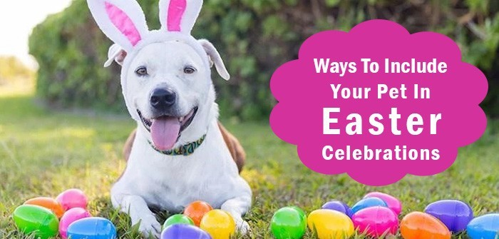 Easter Activities for Dogs