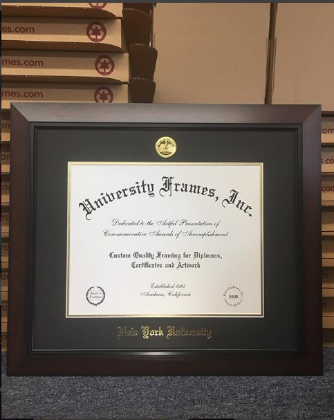 Black Cherry Moulding Diploma Frame by University Frames