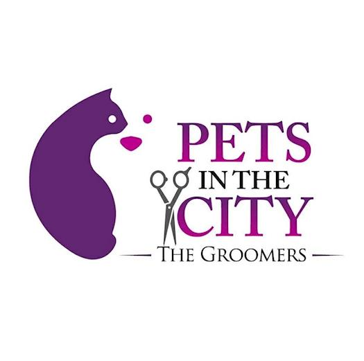 Pet care in Dubai