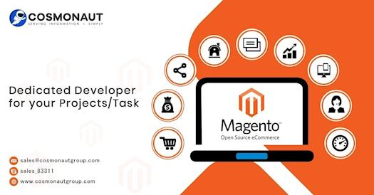 Magento Web Development Company USA | Magento Ecommerce Development | Magento