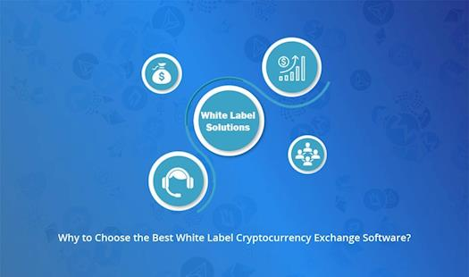White Label Cryptocurrency Exchnage
