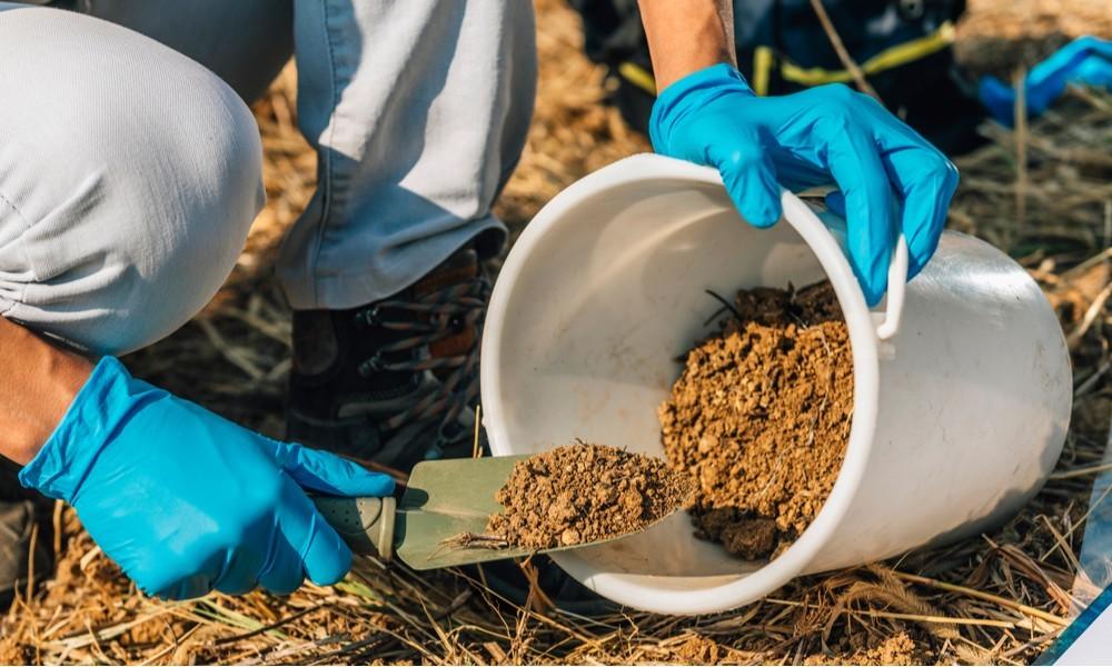 Fertilizer & Soil: Buy Fertilizer & Soil Online at Best Prices