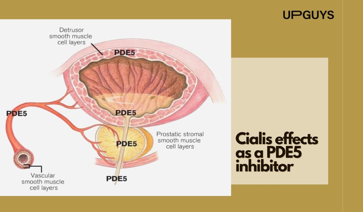 Cialis Effects