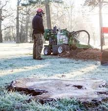 tree removal, tree trimming, stump grinding, stump removal, planting and fertilization and emergency