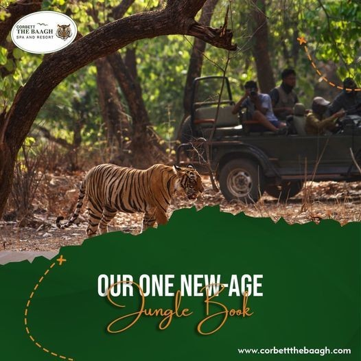 Places to See Around Jim Corbett National Park - Corbett the Baagh