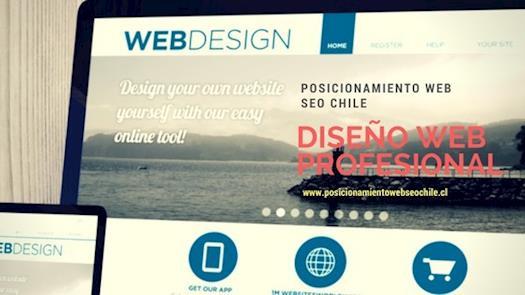 diseño web profesional company