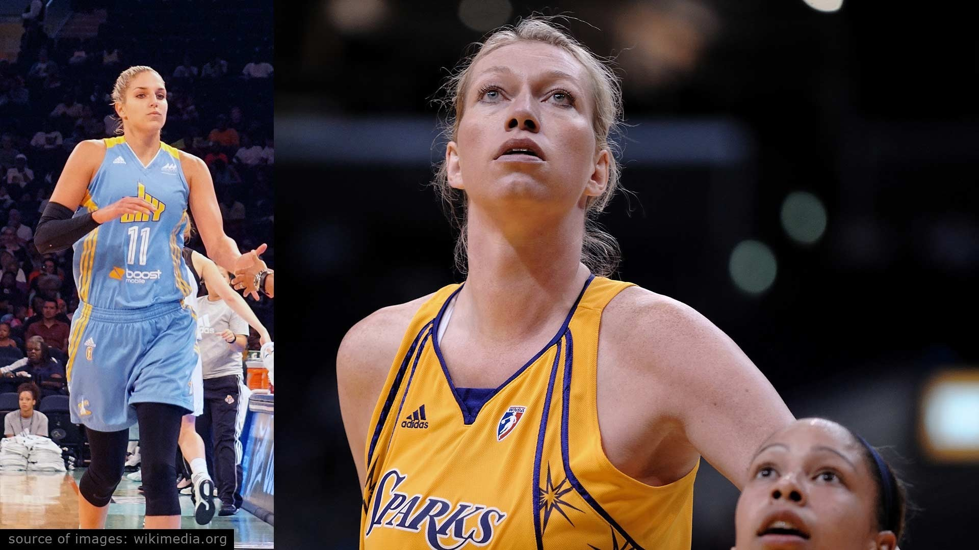 Tallest Female Basketball Players