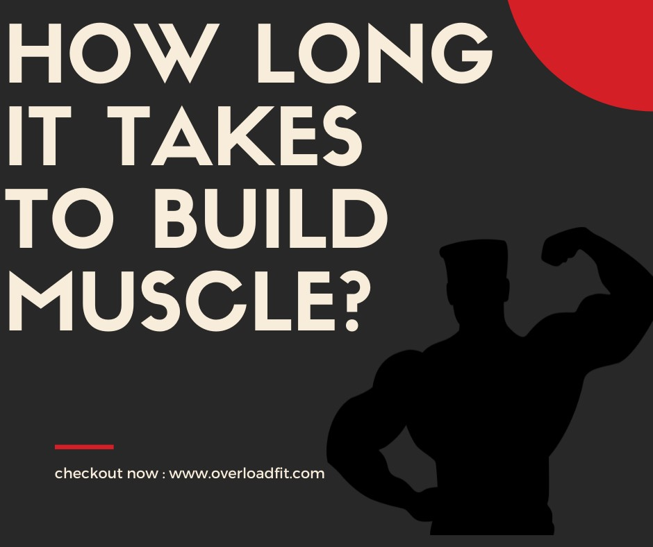 How long it takes to build muscle?