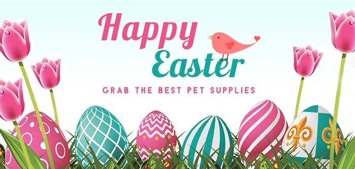Easter Sale 2020 – Grab The Best Pet Supplies And Save 12% On Your Order
