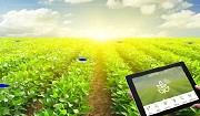 Do Farming in a Productive Way with Smart Agriculture Technology