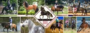 Top Tips for a Perfect Horse-Riding Holiday