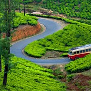 Make Our Moments Best Tour Package Kerala tour package