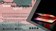Amazing Importance of Web Application Development for Enterprises for Today