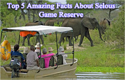 Top 5 Wonderful Facts And Best Time To Visit Selous Game Reserve