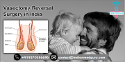Improving Outcomes for Patients With 100% Guaranteed Vasectomy Reversal In India