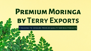 7 Reasons to Consume Moringa Leaves and Fruits