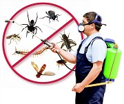 Things To Consider When Selecting A Pest Control Service