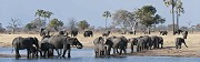 Victoria Falls Day Trips – Have This Enlivening Trip To Find Scenic Beauty