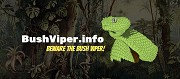 Fascinating Details About The Bush Viper