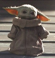 Finding the day: Radio-controlled Baby Yoda. He rolls on the floor and sweetly moves his ears