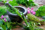 Agreement between India and Peru in the field of Medicinal Plants