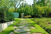 Tree care and landscaping tips