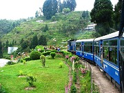 Discover The Beauty Of Darjeeling
