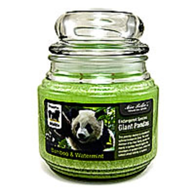 Endangered Species - Giant Pandas Jar Candle